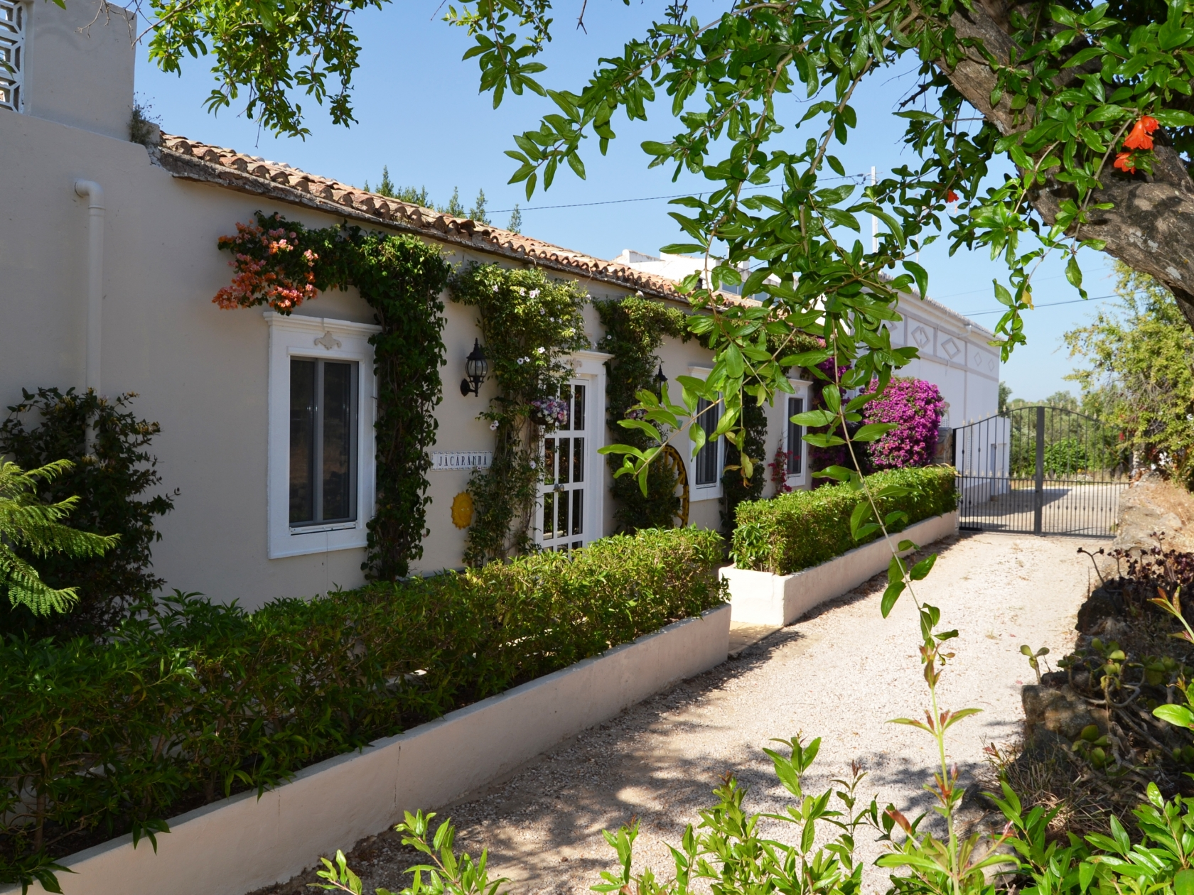 Beautiful Traditional Cottage In The Algarvian Countryside